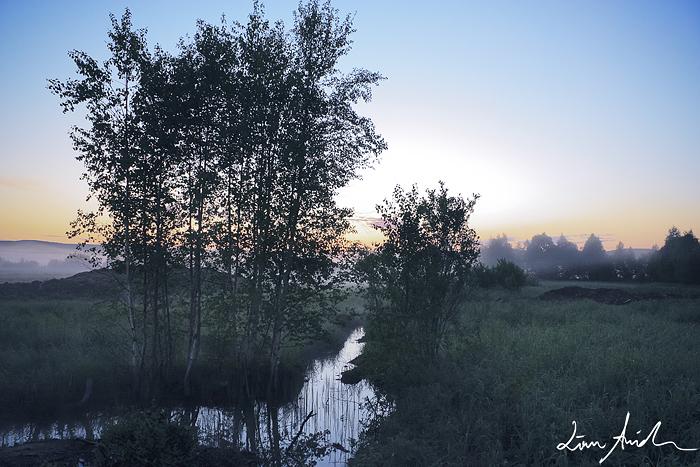 Sommarnatt-webb1